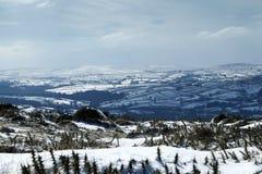 雪风景在Dartmoor国家公园 免版税库存图片