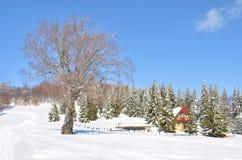 雪风景,马其顿 免版税库存图片