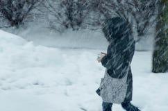 雪风暴 库存照片