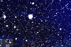 雪飞雪和光 免版税库存照片
