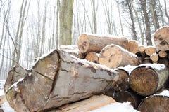 雪飞雪木头堆 免版税库存图片
