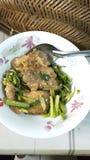 雪鱼厨师用芹菜 图库摄影