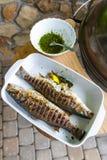 雪鱼在一个格栅烹调了以烘烤和晒干的形式 库存照片