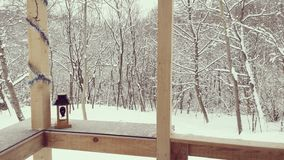 雪,冷的天 库存图片