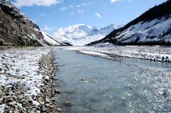 雪,加拿大人罗基斯,加拿大Athabasca河  免版税库存图片