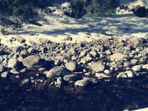 雪,石头,河 库存照片