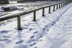 雪,约克夏,英国-脚步的领域 库存照片