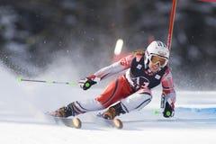 滑雪:利恩茨巨人障碍滑雪 免版税库存图片