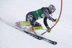 滑雪:Lienz障碍滑雪 库存照片