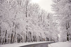 雪从一条农村路被清除了在以后湿降雪 库存图片