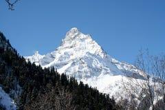 雪崩中断盖帽留下了山准备好的正确的树荫发光的倾斜雪山顶给顶层 图库摄影