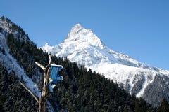 雪崩中断盖帽留下了山准备好的正确的树荫发光的倾斜雪山顶给顶层 库存照片