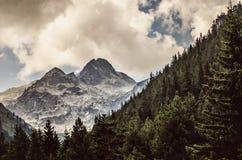 雪崩中断盖帽留下了山准备好的正确的树荫发光的倾斜雪山顶给顶层 免版税库存照片