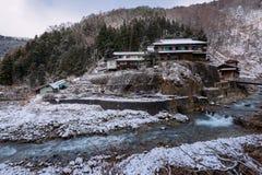 雪猴子公园,山之内,日本 免版税库存图片