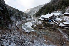 雪猴子公园,山之内,日本 免版税图库摄影