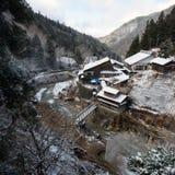 雪猴子公园,山之内,日本 免版税库存照片