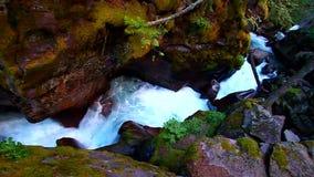 雪崩小河瀑布蒙大拿 免版税库存图片