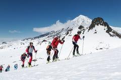 滑雪登山冠军:小组滑雪在滑雪的登山家攀登在背景火山 库存图片