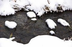 雪围拢的未冻结的水小河细节在冬天在山Kozomor 免版税图库摄影
