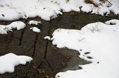 雪围拢的未冻结的水小河细节在冬天在山Kozomor 免版税库存图片