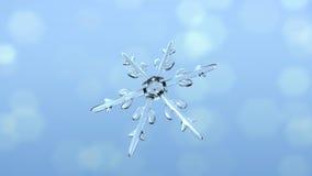 雪水晶选拔前面 库存图片