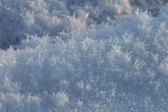 雪水晶 库存照片