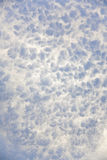 雪细节通过光 库存图片
