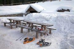 雪靴 免版税库存照片