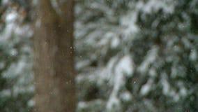 雪9 9 影视素材