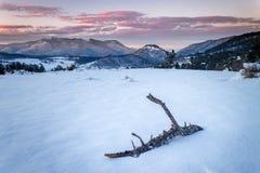 雪Rodopi山 库存图片