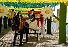雷东多,葡萄牙2013年8月-10。在街道的节日花我 免版税库存照片