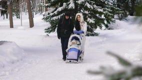 贝雷帽蓝色焰晕外套父亲高尔夫球外套妈咪红色降雪的儿子结构冬天 走在冬天公园的年轻家庭 她滚动婴儿推车的婴孩 新鲜空气是非常有用的为 股票录像