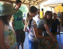 雷德公园动物园比赛,图森,亚利桑那 免版税库存照片
