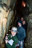 雷曼使游览-大盆地国家公园陷下-贝克,内华达 免版税库存图片