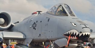 A-10雷电II/Warthog 库存图片