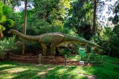 雷龙属显示模型在珀斯动物园里 库存照片