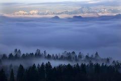 雾下西雅图 库存图片