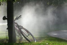 雾公园 免版税库存照片
