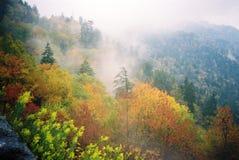 雾分布 免版税库存图片