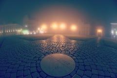 雾和夜 免版税库存照片