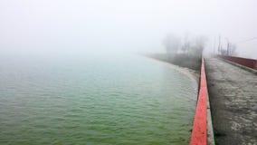 雾和自然 免版税库存图片