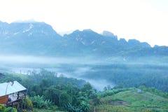 雾在土井城镇达奥岛,泰国,丰盈常青森林和有雾的早晨 库存图片