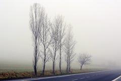 雾在村庄 免版税图库摄影