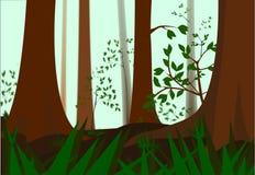 雾在森林里 免版税库存照片