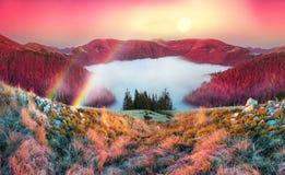 雾在秋天 免版税库存图片