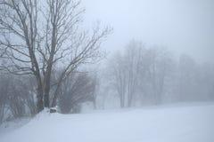 雾在阿尔卑斯 免版税库存照片