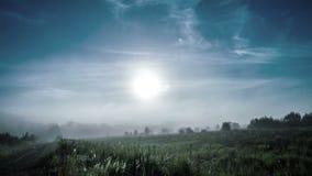 雾在黎明,时间舔4k 影视素材