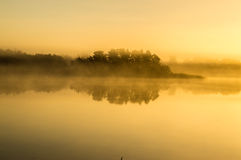 雾在水的草甸早晨 图库摄影