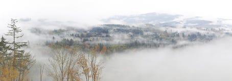 雾在水的草甸早晨 免版税库存照片