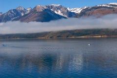 雾增强的早晨 库存照片